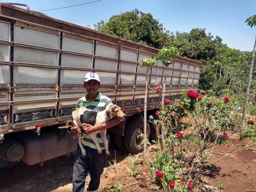 Cinquenta famílias rurais são despejadas de fazenda do grupo Atalla em Alvorada doSul